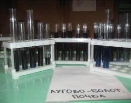 Изучение водно-физических и химических свойств почвы Приазовских плавней