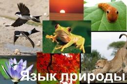 Язык природы